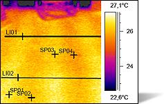 Fabulous Thermografie SD81